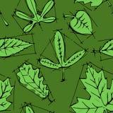 叶子的汇集 免版税图库摄影