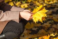 叶子的秋天妇女 免版税库存照片