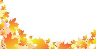 从叶子的背景 图库摄影