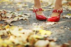 叶子红色鞋子 库存照片
