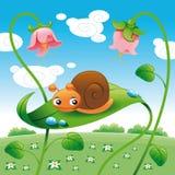 叶子蜗牛 库存照片