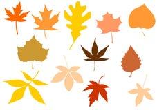 叶子被设置的剪影向量 免版税库存照片
