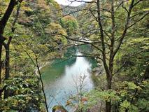 叶子颜色变动风景和绿松石在Dakigaeri峡谷浇灌小河在日本 免版税库存图片