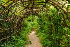 叶子tunel在庭院里 图库摄影
