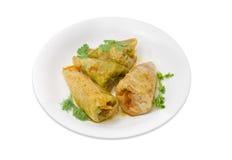 绿叶的煮熟的圆白菜卷和枝杈在白色盘的 库存图片