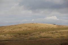 叶绿泥石,约克夏,英国 免版税图库摄影