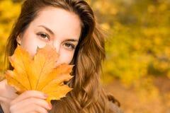叶茂盛秋天的秀丽 免版税图库摄影