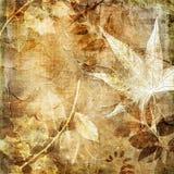 叶茂盛纸张 向量例证