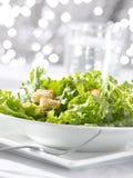 叶茂盛蔬菜沙拉用与光亮的backg的油煎方型小面包片 库存照片