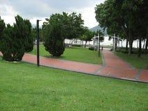 叶茂盛Tai Po海滨公园,香港 免版税库存照片