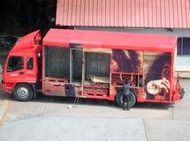 司机烙记的送货卡车是被举的开放的Coc可乐的侧面板 免版税库存照片