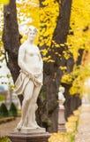 司音乐及抒情诗的女神的雕塑 免版税库存照片