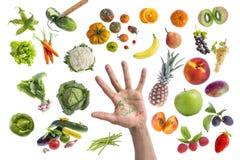 吃五的健康食物、各种各样的水果和蔬菜的概念每在一只手写的天在中部在withte 库存照片