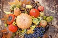 吃健康季节性食物有机水果和蔬菜-在桌上的季节性收获 免版税库存图片