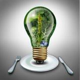 吃健康想法 向量例证