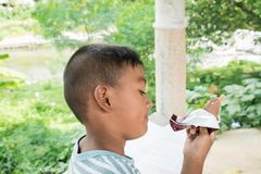 吃冰淇凌的亚裔小男孩 库存图片