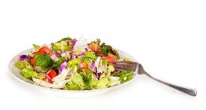 吃准备好的沙拉 免版税库存照片