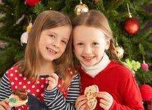 吃前女孩结构树二的曲奇饼 免版税库存照片