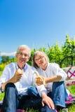 吃和喝在野餐的资深夫妇在夏天 免版税库存照片