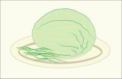 吃圆白菜 免版税库存照片