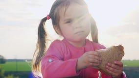 吃在一块晴朗的沼地的逗人喜爱的小女孩一个三明治 股票录像