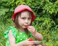 吃女孩小的草莓 免版税库存图片