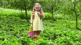 吃女孩草莓 股票视频