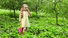 吃女孩草莓 影视素材