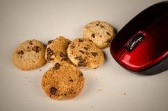 吃曲奇饼的老鼠 免版税图库摄影