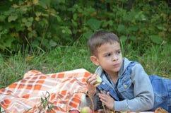 吃果子的愉快的孩子 吃苹果的愉快的逗人喜爱的儿童男孩 在一条床罩的谎言在秋天停放 免版税库存照片
