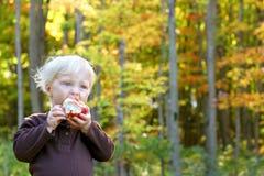 吃果子的婴孩在苹果树 库存图片