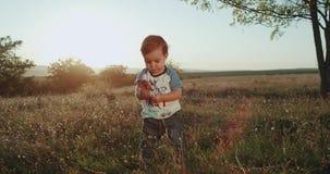 吃棒棒糖的一个岁逗人喜爱的男孩在自然,非常滑稽,在背景的日落 影视素材