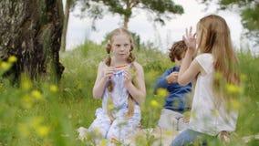 吃比萨的无忧无虑的少年在绿色草坪一会儿夏天野餐 少年女孩和男孩吃比萨一会儿夏天 影视素材