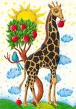 吃滑稽的长颈鹿的苹果 图库摄影