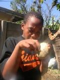 吃猴面包树果子的非洲男孩 库存图片