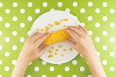 吃玉米玉米,顶视图的妇女 免版税库存照片