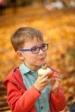 吃甜杯形蛋糕的年轻男孩在秋天公园 免版税库存图片