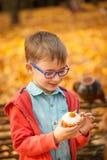 吃甜杯形蛋糕的年轻男孩在秋天公园 库存照片