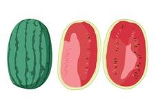 吃的西瓜果子新鲜美丽 皇族释放例证