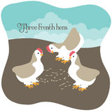 吃种子的三只法国母鸡 免版税库存照片