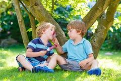 吃红色冰淇凌的两个小兄弟姐妹男孩在家的庭院里 图库摄影