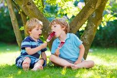 吃红色冰淇凌的两个小兄弟姐妹男孩在家的庭院里 免版税库存照片