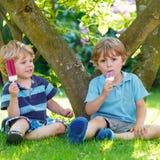 吃红色冰淇凌的两个小兄弟姐妹男孩在家的庭院里 免版税图库摄影
