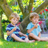 吃红色冰淇凌的两个小兄弟姐妹男孩在家的庭院里 库存照片