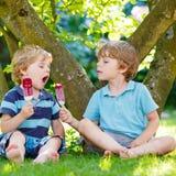 吃红色冰淇凌的两个小兄弟姐妹男孩在家的庭院里 库存图片