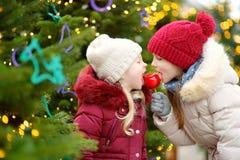 吃红色苹果的两个可爱的妹盖用在传统圣诞节市场上的糖结冰 免版税库存图片