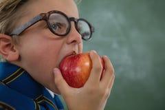 吃红色苹果的男小学生反对黑板 图库摄影