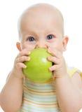 吃绿色苹果的男婴,查出在白色 图库摄影