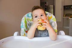 吃苹果的可爱的男婴 婴孩的第一食物10个月 学会小孩的男孩与牙固体食物居住 库存照片