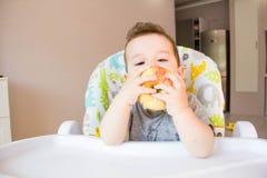 吃苹果的可爱的男婴 婴孩的第一食物10个月 学会小孩的男孩与牙固体食物居住 图库摄影